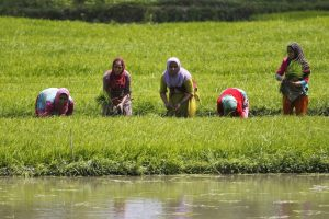 Centre's Economic Package Addresses Long Term Issues, Not Immediate Concerns of Farmers
