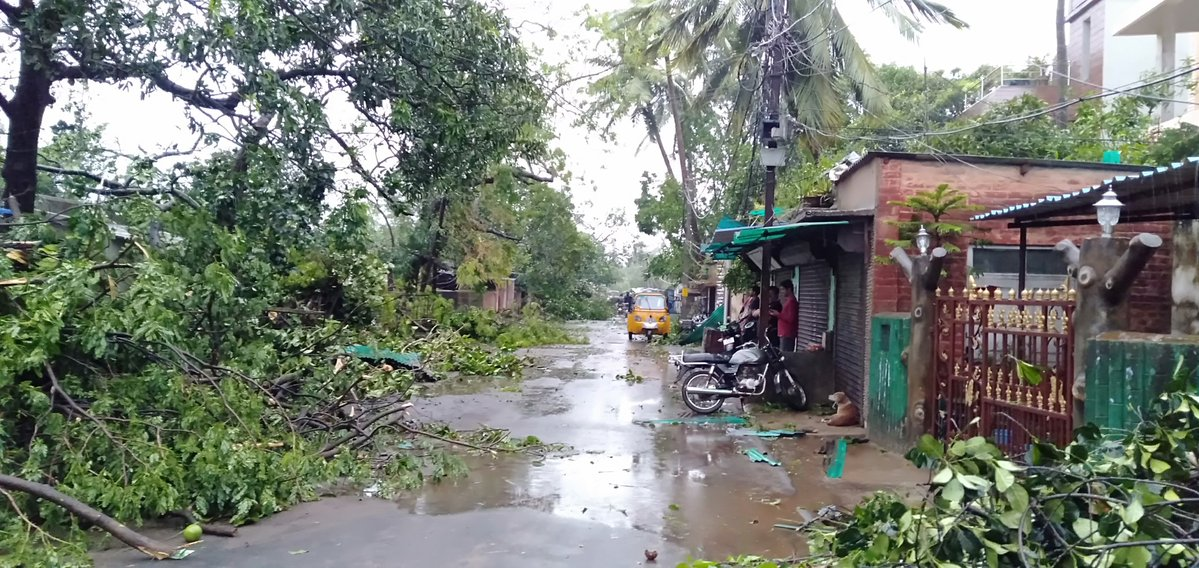Ground Report | Cyclone Fani: The Trail of Destruction