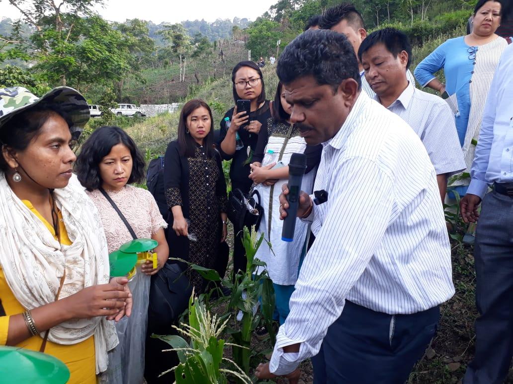 IIMR scientists in an affected area in Mizoram. Credit: Special arrangement