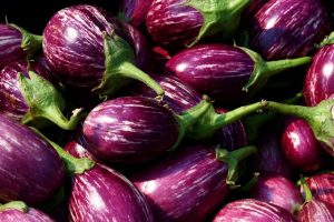 Debate: The Bangladesh Bt Brinjal Story Is Not so Rosy