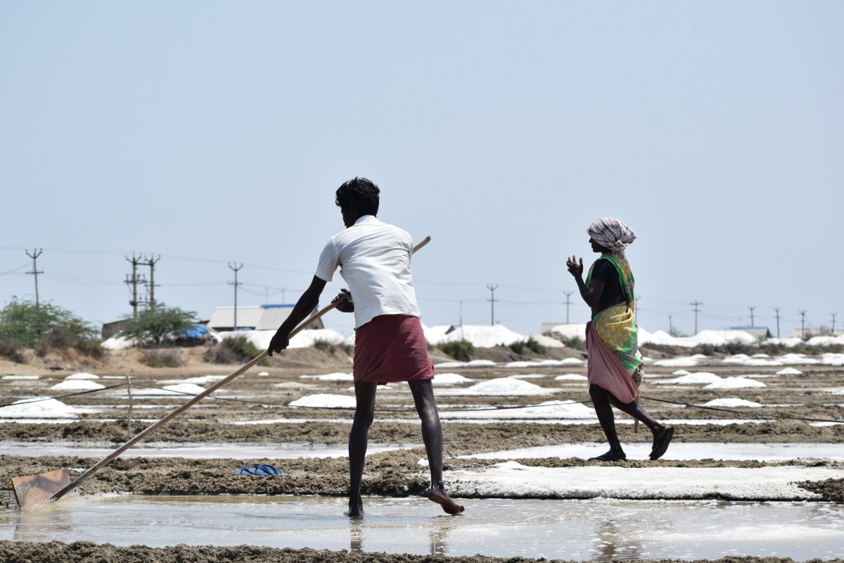 Labourers at a salt pan in Vedaranyam. Credit: Aparna Shukla