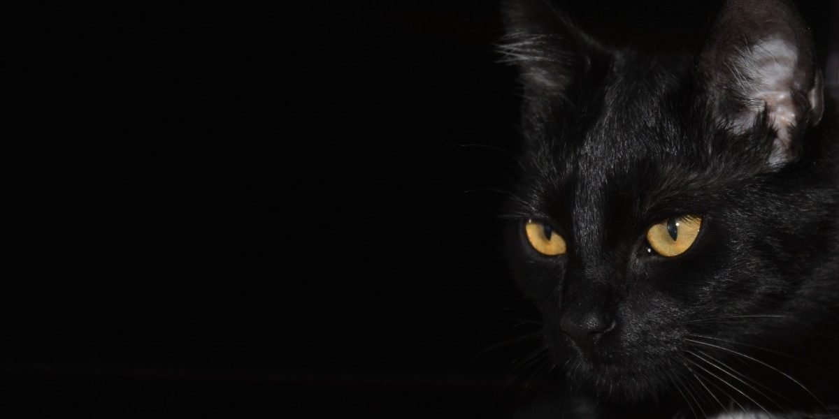 Who Should Fight Superstition?