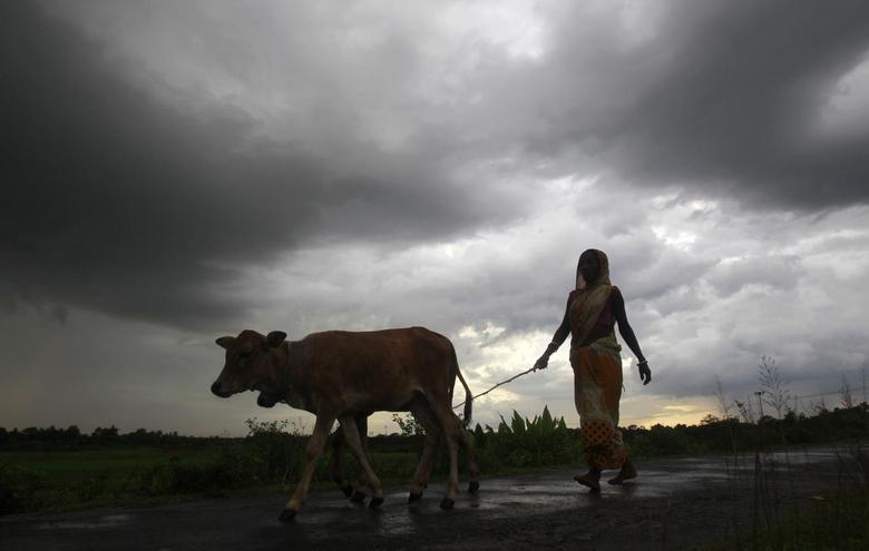 Monsoon Arrives in Kerala After a Week's Delay