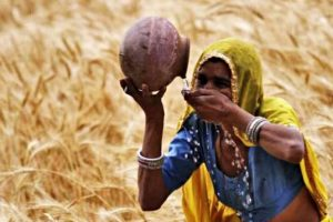 Exclusive: Centre's Crop Insurance Scheme Fails the Drought Test, 40% Claims Unpaid
