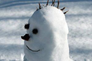 Can You Teach a Self-Driving Car That a Snowman Won't Cross the Road?