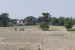 Another Delayed Monsoon Doesn't Bode Well for Bihar
