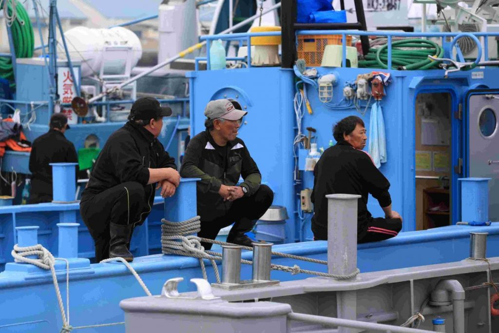 Japan to commercially hunt 227 whales this year