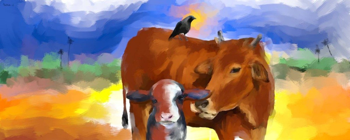 'Gau Raksha' Has Made Me a Stranger in My Own Village