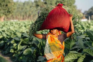 Centre Still Doesn't Have a Roadmap for Doubling Farmers' Income