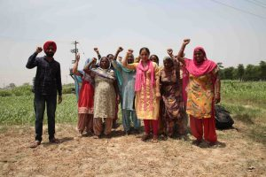 Watch | How Dalit Landless Farmers Are Reclaiming Their Share of Land in Punjab