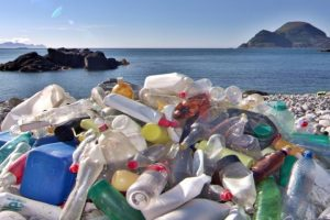 By Opting For Bioplastics, Are You Really Making The Greener Choice?
