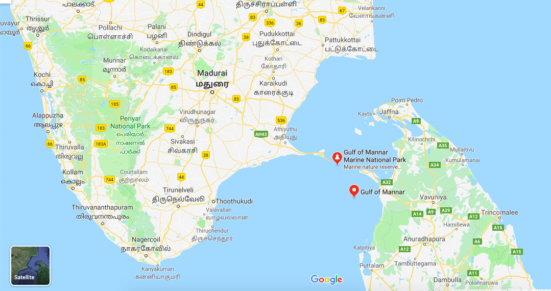 The location of the Gulf of Mannar. Image: Google Maps