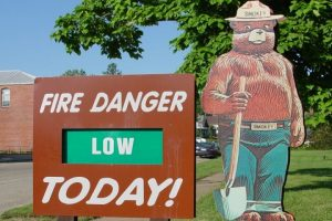 Smokey Bear Remains a Symbol of What a Powerful Public-Service Ad Campaign Can Achieve