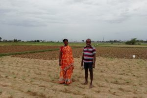 New Andhra Pradesh Cultivators Act Unlikely to Solve Tenant Farmers' Problems