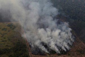 Amazon Rainforest Fires Leave São Paulo in the Dark