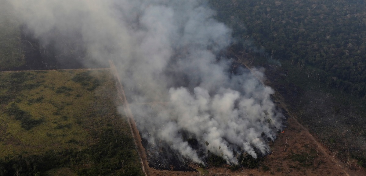 Amazon Rainforest Fires Leave São Paulo in the Dark