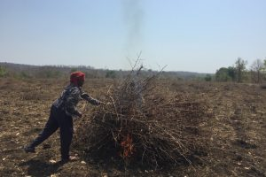 In Yavatmal, Everyone Reels Under the Drought – but the Women Suffer More