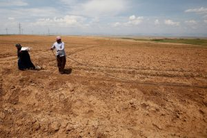 Desertification Costs World Economy up to $15 Trillion: UN