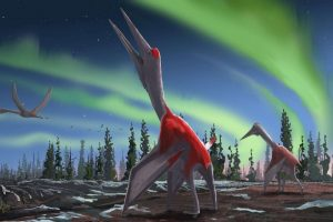 Enormous Flying Dinosaur Species Discovered in Canada