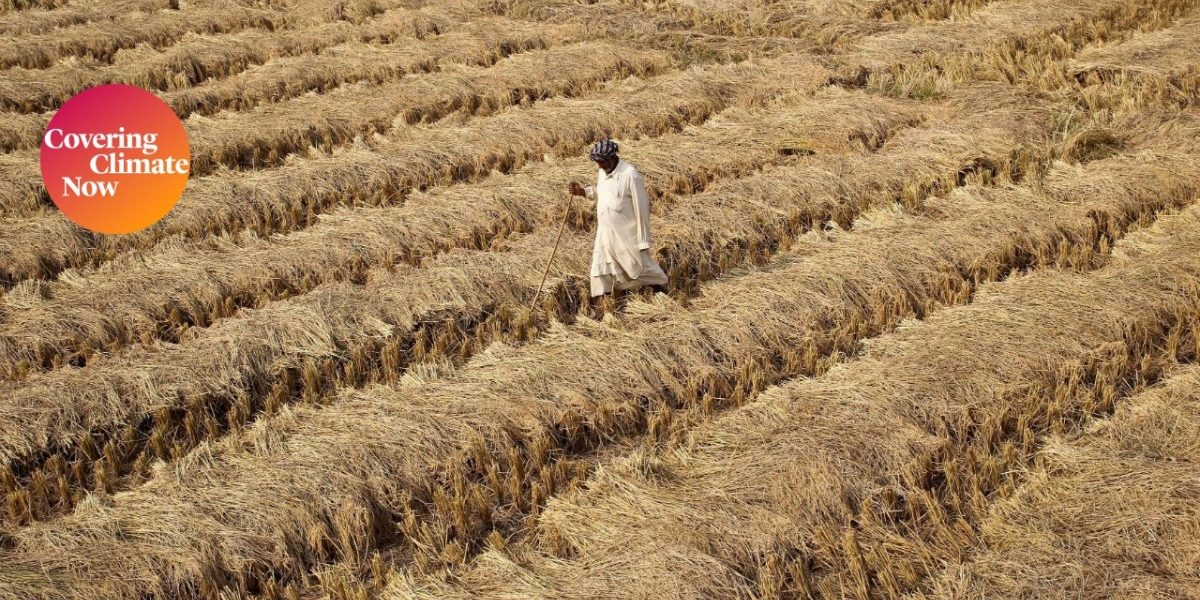 Climate Change Poses Serious Threats to India's Food Security