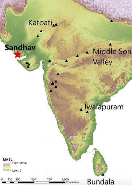The location of the site in India's Gujarat. DOI: 10.1016/j.quascirev.2019.105975