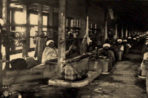 Watch | Documentary From Kashmir Shows Forced Labour Is Prevalent Even Today