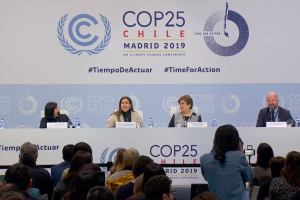 COP25 Diary: No Concessions for Latin America in a Latin American Summit