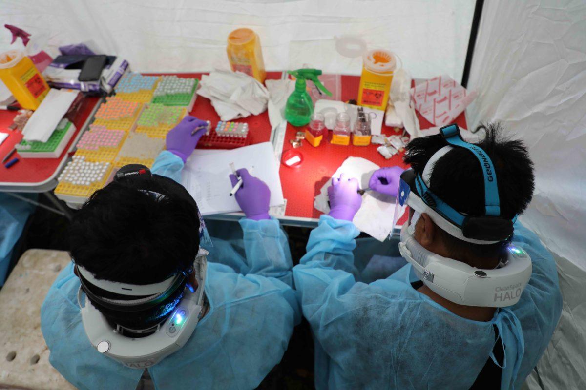 Bats, Bat Hunters in Nagaland May Be Exposed to Ebola-Family of Viruses