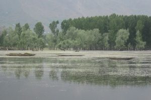 In Protecting the Kashmir Valley, Wular Lake Has Become Harder to Save