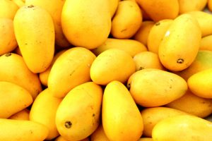 Arrival of Alphonso Mangoes This Year Impacted by Unexpected Weather