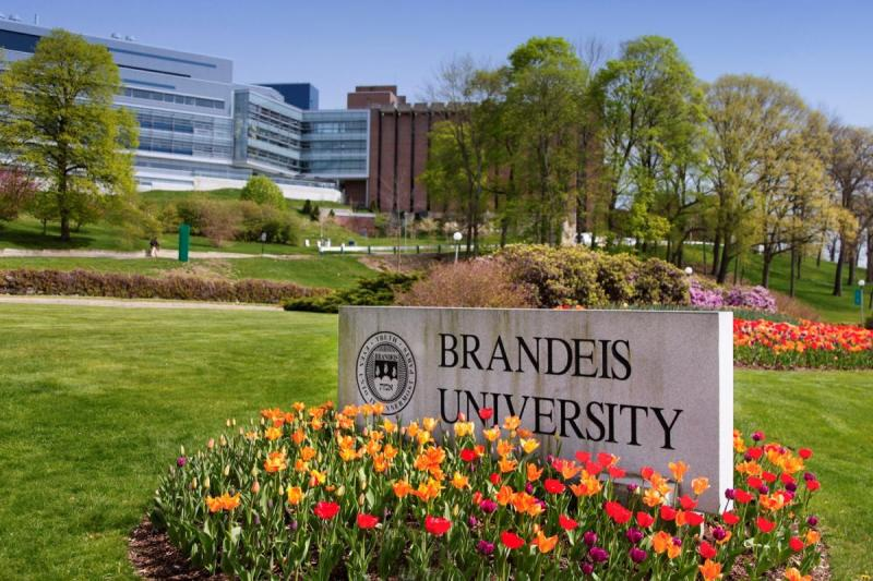 In a First, US's Brandeis University Prohibits Caste Discrimination on Campus