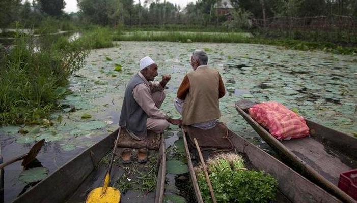 In the Relentless Pitting of Kashmiri Pandits Against Muslims, It's Kashmiriyat That Suffers