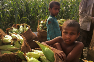 Budget 2020 Leaves us Wanting More to be Done on Malnutrition and Hunger
