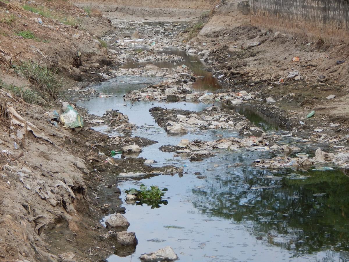 Orathupalayam dam, water hyacinth, Anaipalayam, Tiruppur, Erode, Kooduthurai, Bhavani river, Cauvery river, Cauvery-Bhavani confluence, Uthukuli, Vengalapalayam, Arugampalayam, Karur, Athipalayam, Noyyal river, dyeing, bleaching, groundwater contamination, riparian agriculture, Fred Pearce, industrial effluents, textile manufacturing, Australia Open,