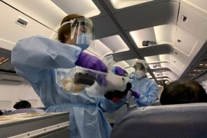 Some Thoughts on How the World Will Fly After Coronavirus