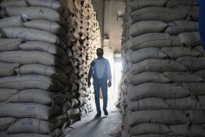 Once Again, the Centre Has Excess Wheat, Rice Stocks. What Are Its Options?