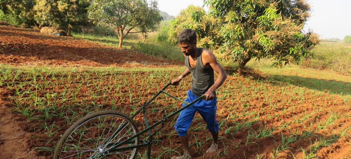 In Odisha's Villages, Returning Migrant Workers Stare at Severe Uncertainty