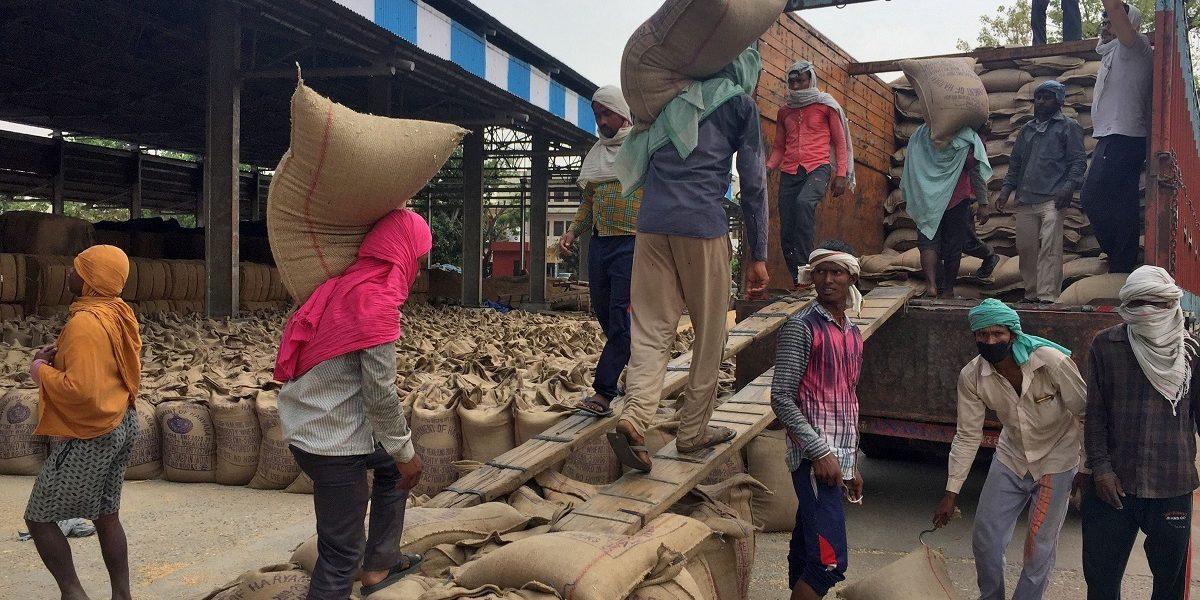 PM Garib Kalyan: 144 Million Ration Card Holders Not Provided Grain in May