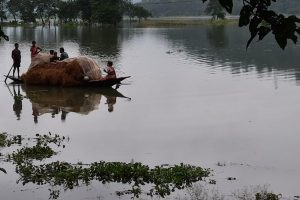 As Floods Wash Over Assam, State Government Left Facing a Cascade of Disasters