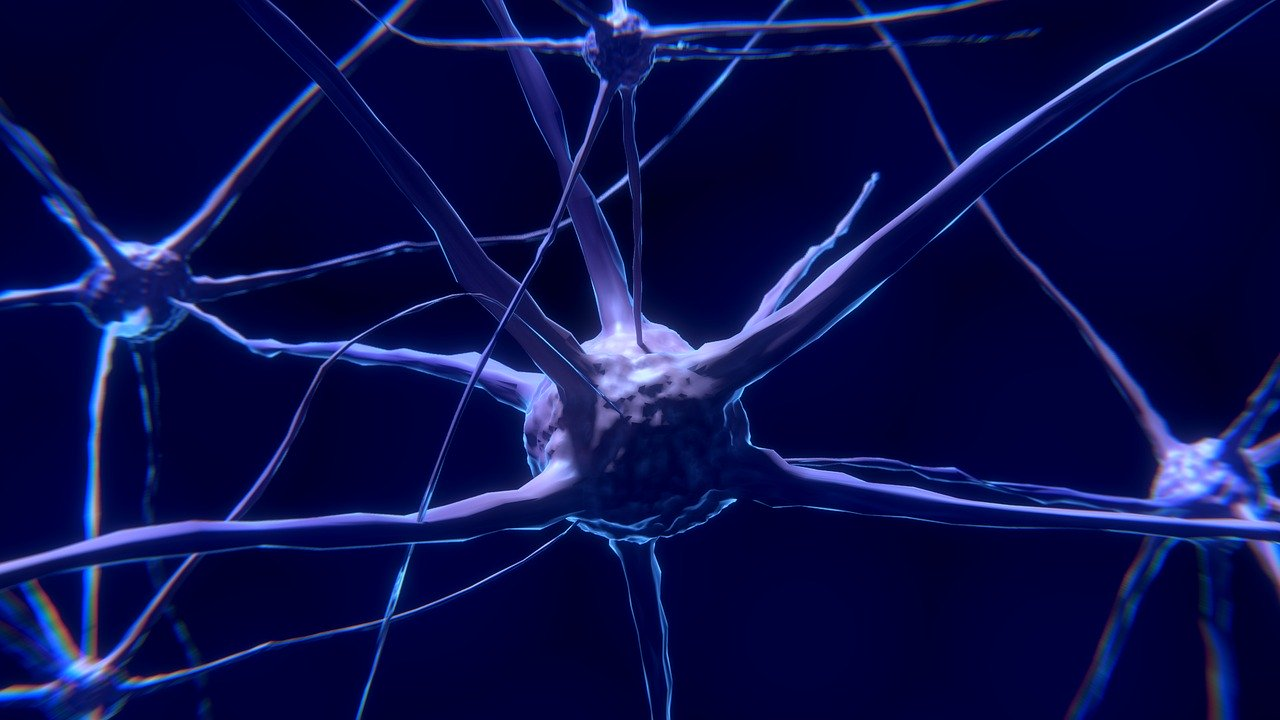 Rare Neurological Disorder, Guillain-Barré Syndrome, Linked to COVID-19 - The Wire