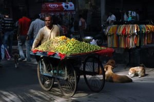 Microcredit or Direct Benefit Transfer? Designing a Scheme for Street Vendors