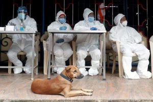 Coronavirus Pandemic Hits Fast-Dwindling Tribe in Andaman Islands