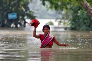 Floods in Bihar Destroyed 7.54 Lakh Hectares of Agricultural Land This Year