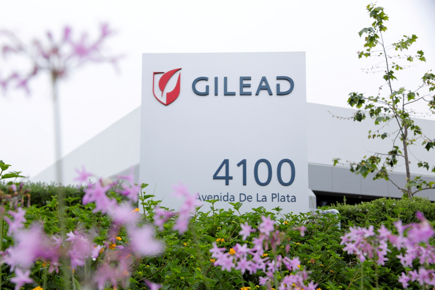 Gilead's Remdesivir Gets US FDA Approval for Hospitalised COVID-19 Patients – The Wire Science