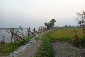 Not Everyone Is Happy With New Embankments on the Kosi in Bihar