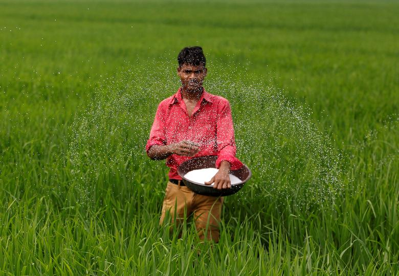 Why KCR's Crop Regulation Policy Has Telangana Farmers up in Arms