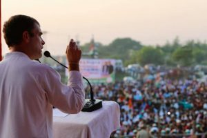 Process to Elect New Congress President Underway, Rahul Gandhi the Frontrunner