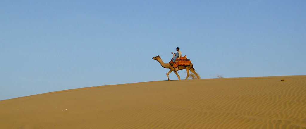 'Can't Even Pay Our Staff': Rajasthan Sees 69% Drop in Tourist Arrivals This Year