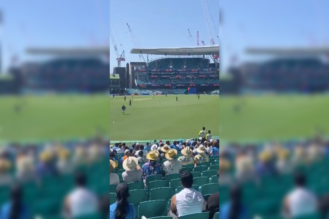 When 'Stop Adani' Protests Reached the Sydney Cricket Ground – The Wire Science