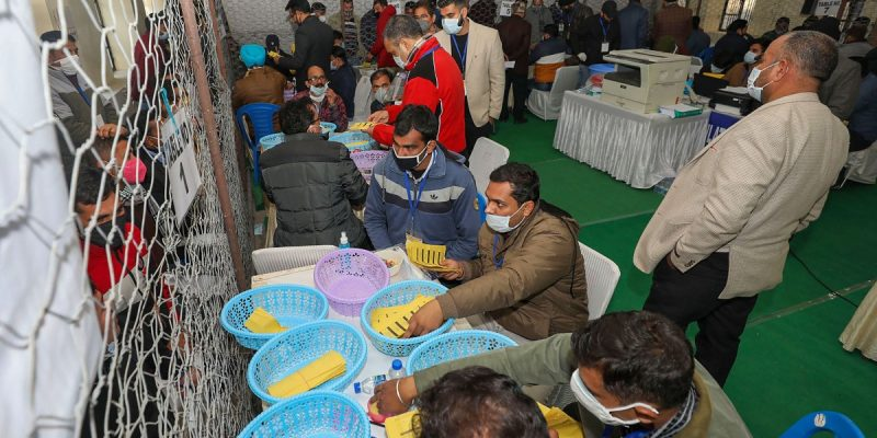 DDC Poll Results Are an Emphatic Rejection of the Scrapping of J&K's Special Status - The Wire